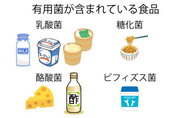 乳酸菌など有用菌を含む食品